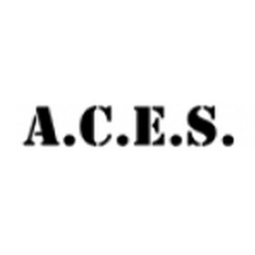 A.C.E.S. Flight Simulation