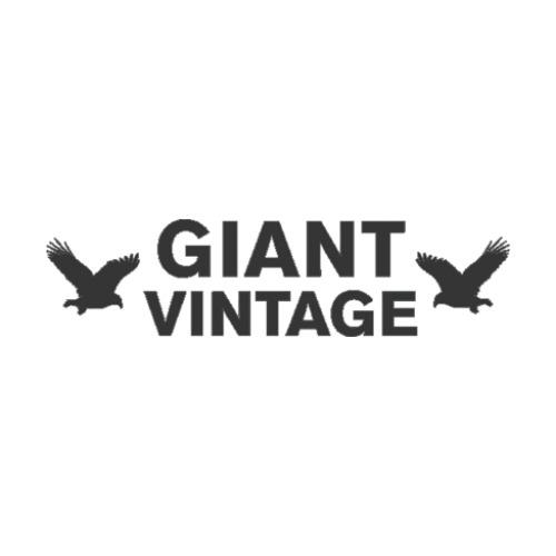 Vintage Giant Vintage AnswersKnoji — ProductsReviewsamp; Giant htdxQCrs