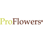 Image result for pro flowers logo