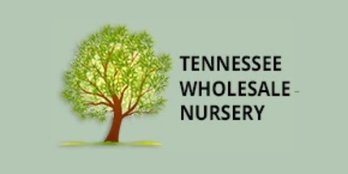 Tn Nursery Coupons