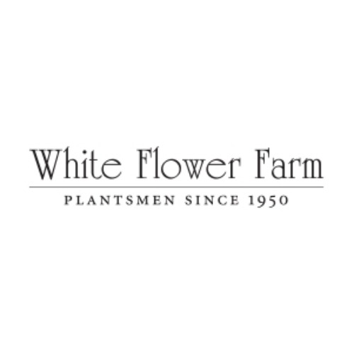 White Flower Farm Review 2019 Ranked 40 Of 107 Online Potted Plants