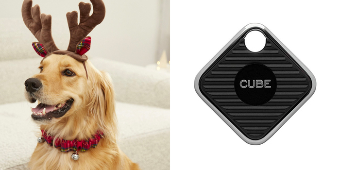 holiday gift guide 2019 the 11 best gifts for your pet