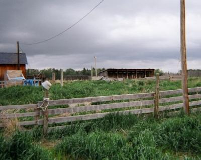 neglected farm property