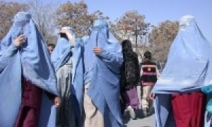 s taliban laws article details