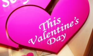 valentines quotes for singles. valentines day quotes and sayings. Best Love Quotes and Sayings; Best Love Quotes and Sayings. GekkePrutser. Apr 29, 04:07 AM