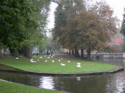 The Minnewater Park in Bruges