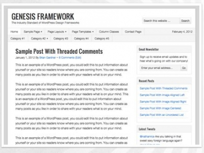 woothemes vs thesis