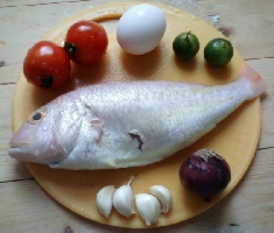 fish cardillo - step 1
