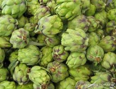 Artichokes: How to Make Artichoke Tea and Pan Roasted Artichokes and ...