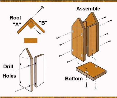 Assemble the parts to the birdhouse