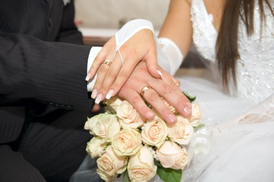 Wedding Shops Online on Online Wedding Shops Comparison  American Bridal And The Knot Wedding
