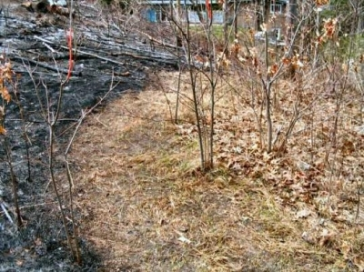 a swailing (controlled burn-off of dead grasses) requires a back-burn trail; an area whereby burnable material is raked away the path of the fire.