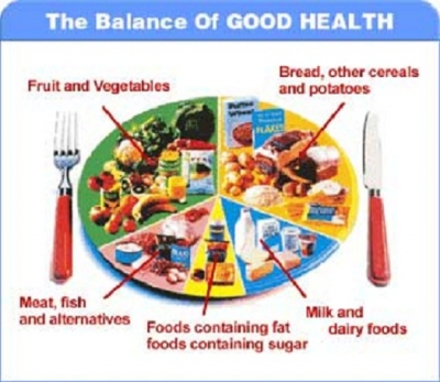 importance of a balanced diet essay Why is a balanced diet important a balanced diet is one that provides the body with all the essential nutrients, vitamins and minerals required to maintain cells.