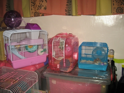 small hamster cages