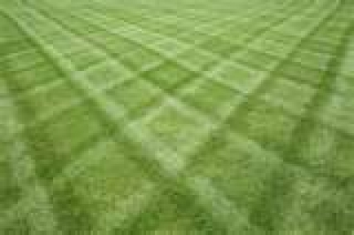 Lawn Cutting 101: How to Cut Your Grass - All About Lawns