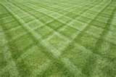 Best Mowing Pattern Free Patterns