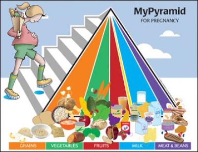 Pregnancy food guide hindi