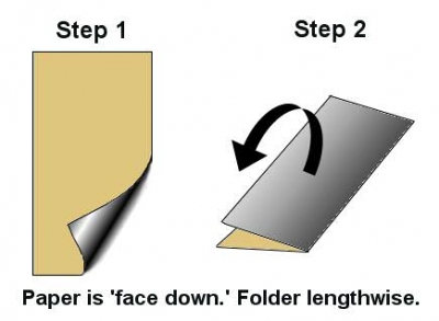 Begin with a rectangular sheet of paper, roughly the dimensions of a paper dollar