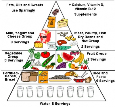 How Many Servings Of Each Food Group Children Need To Stay Healthy